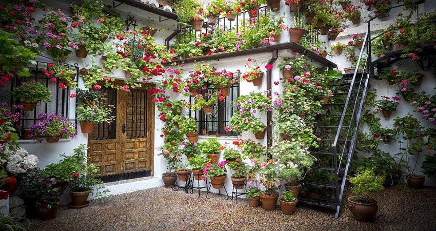 patio fleuri